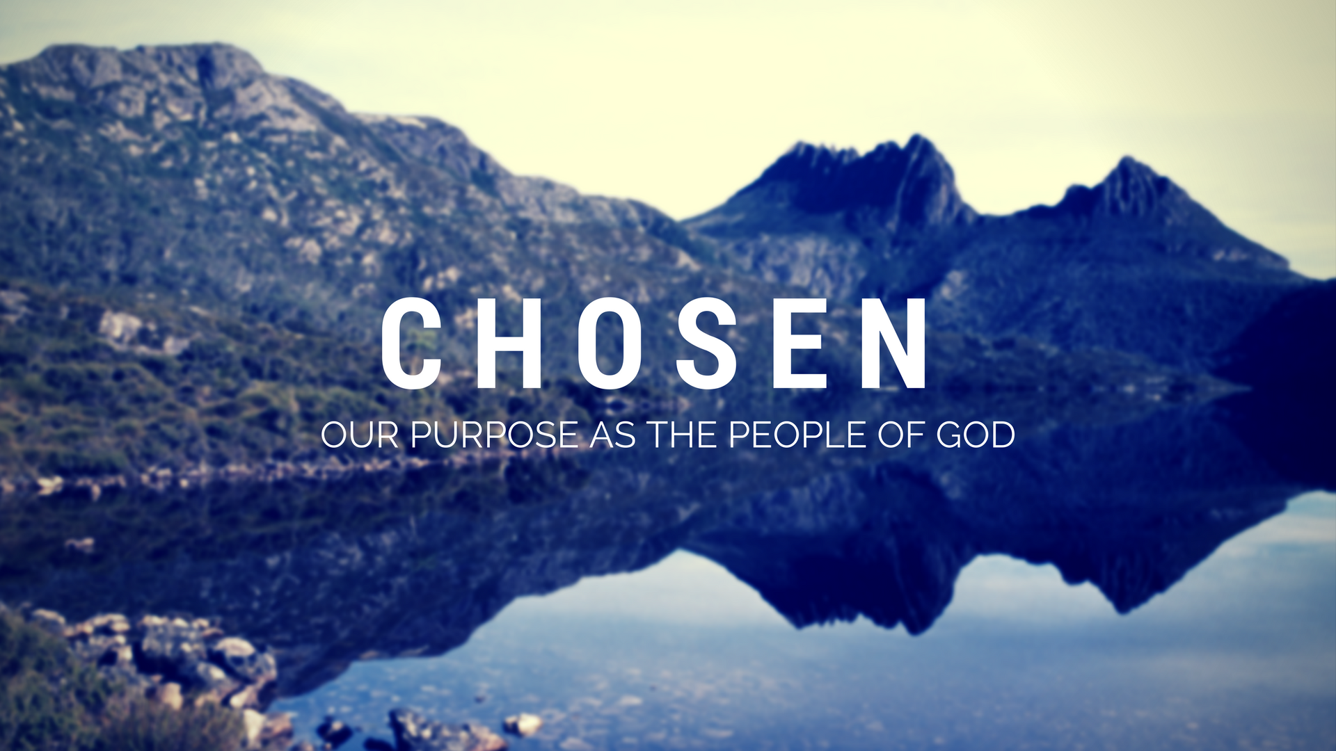 Chosen: To Witness