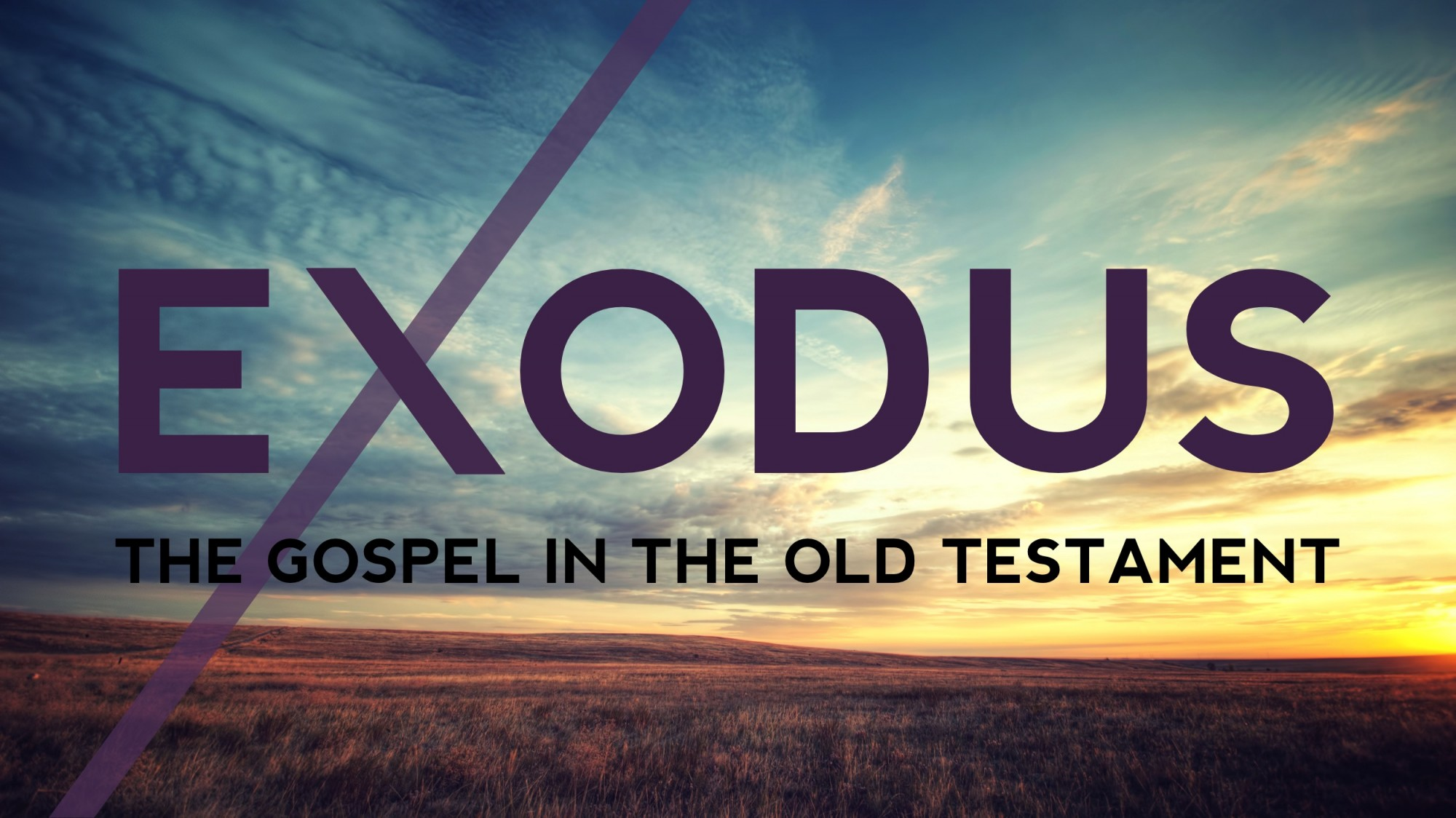 The Gospel in the Old Testament: God is With Us